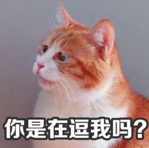 辅助琴女:官方忽悠最为致命!守望先锋排位禁用六英雄,玩家:逼我玩法鸡?